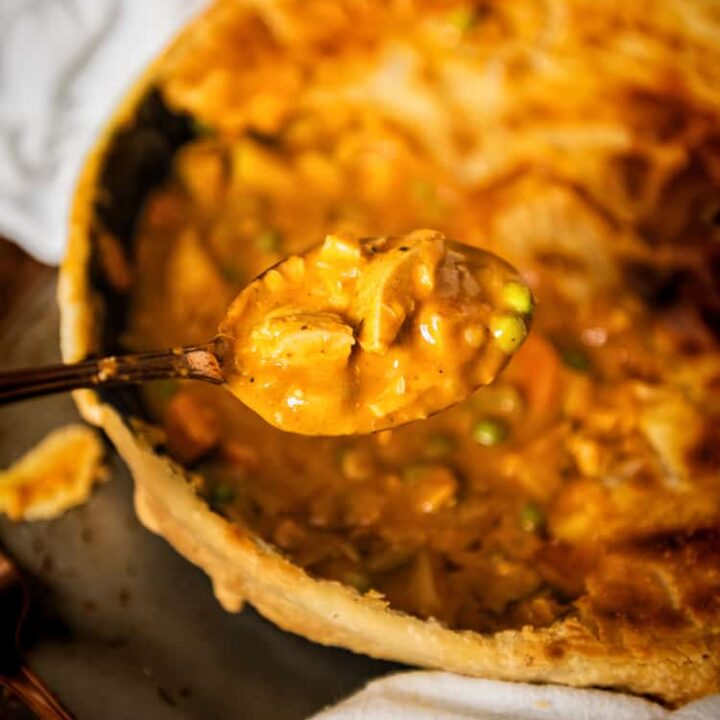 Curried Turkey Pot Pie | Kita Roberts PassTheSushi.com