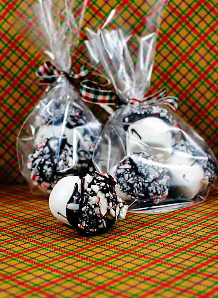 Chocolate Candy Cane Marshmallows \\ Recipe on PassTheSushi.com