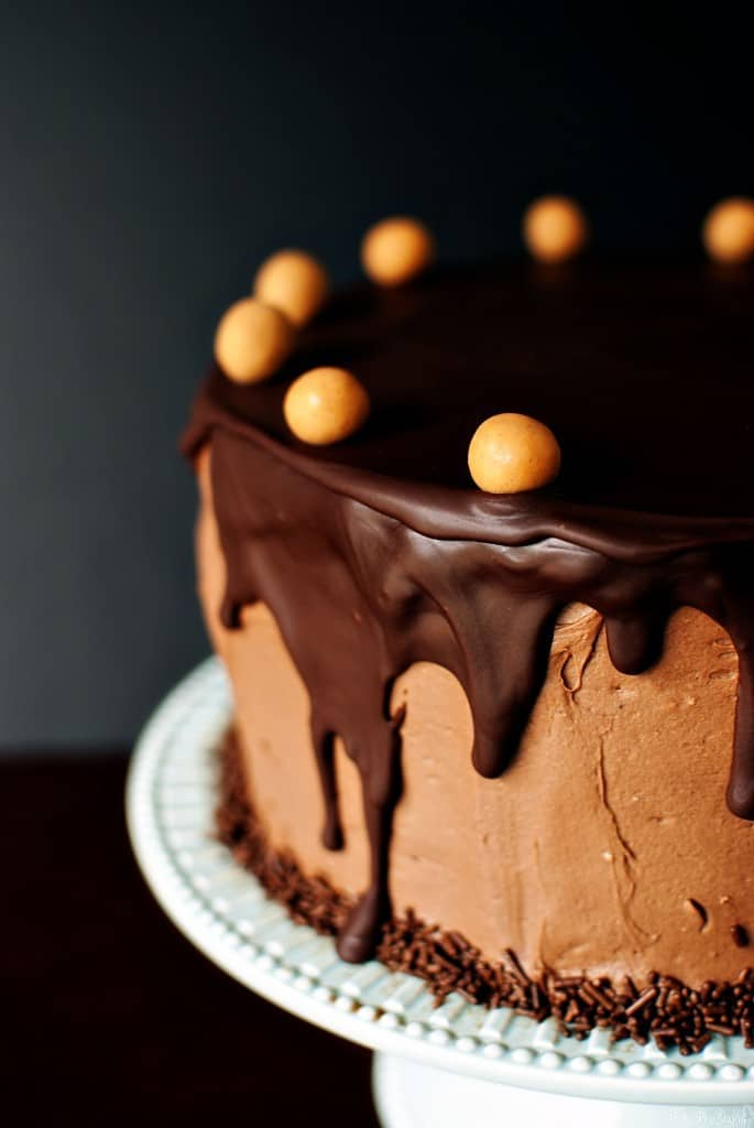 Chocolate Peanut Butter Birthday Cake Pass The Sushi