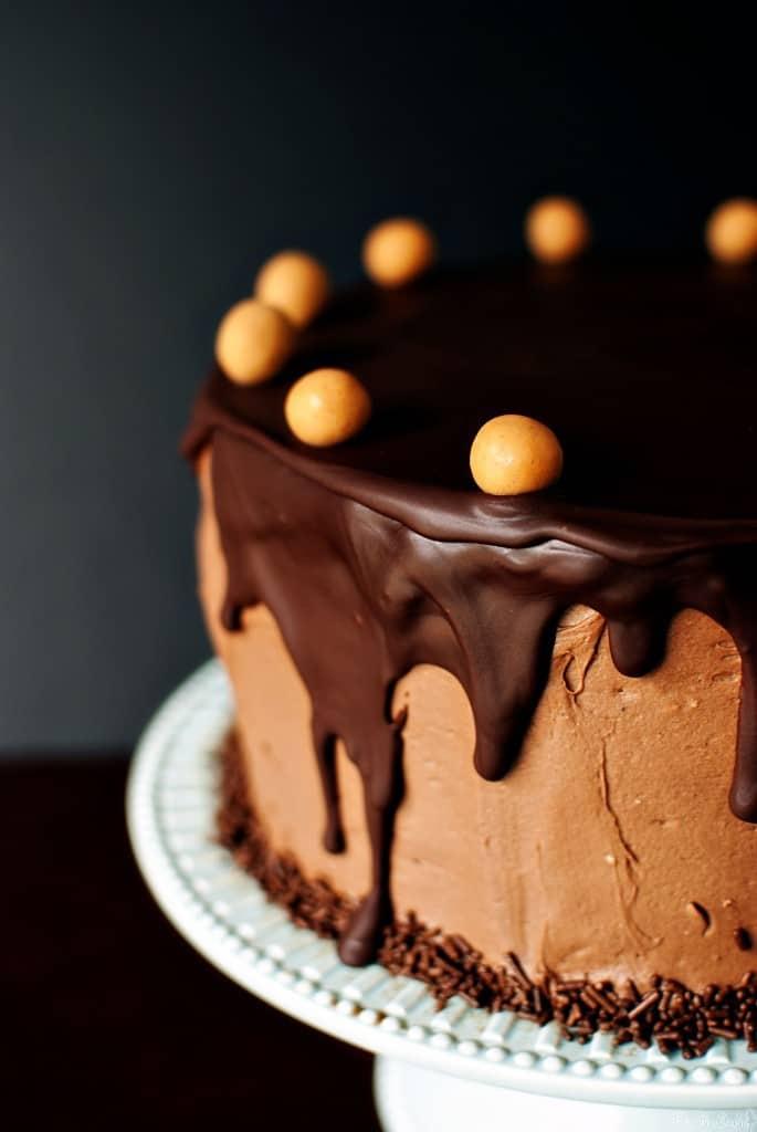 Chocolate Peanut Butter Cake {Pass the Sushi}