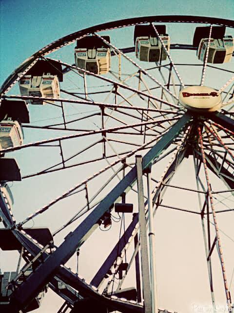 Snapshot Saturday: Fair Days