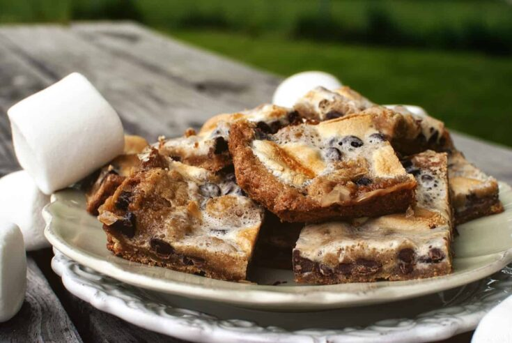 S'mores Bars - Pass The Sushi