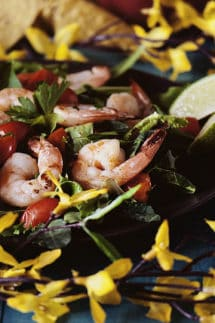 Grilled Tequila Shrimp Salad