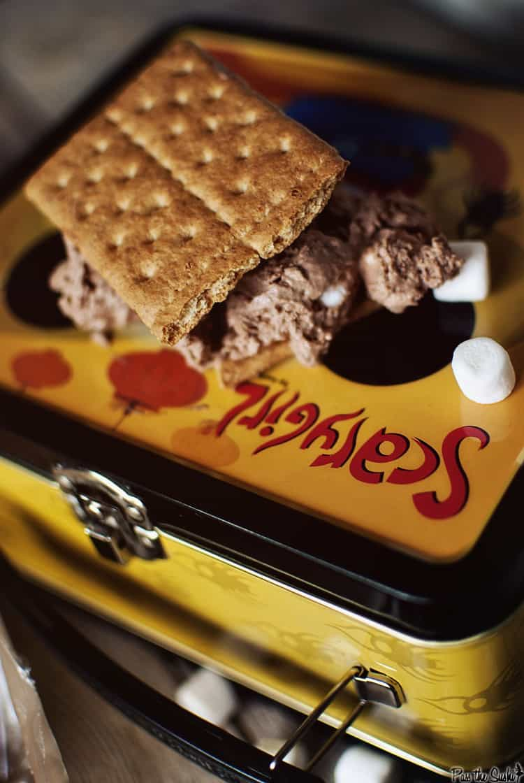 Chocolate S'mores Parfait   Kita Roberts PassTheSushi.com