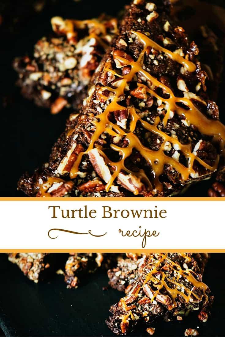 Turtle Brownie