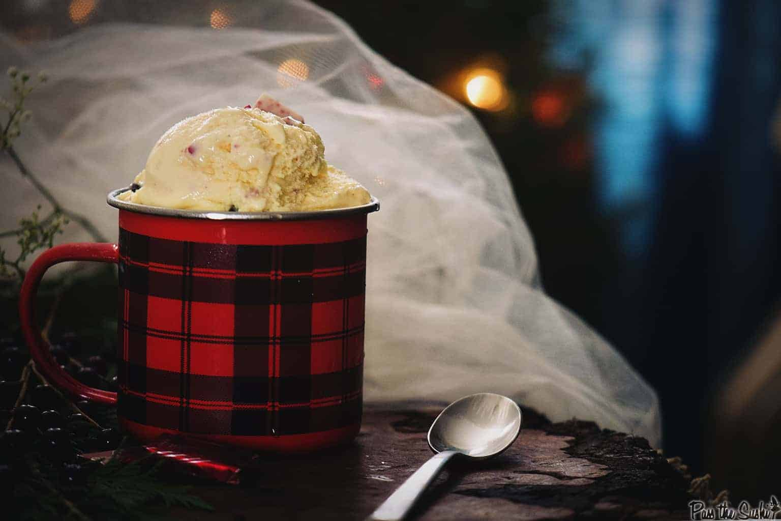 Creamy Peppermint & Dark Chocolate Chip Gelato Recipe | Kita Roberts PassTheSushi.com
