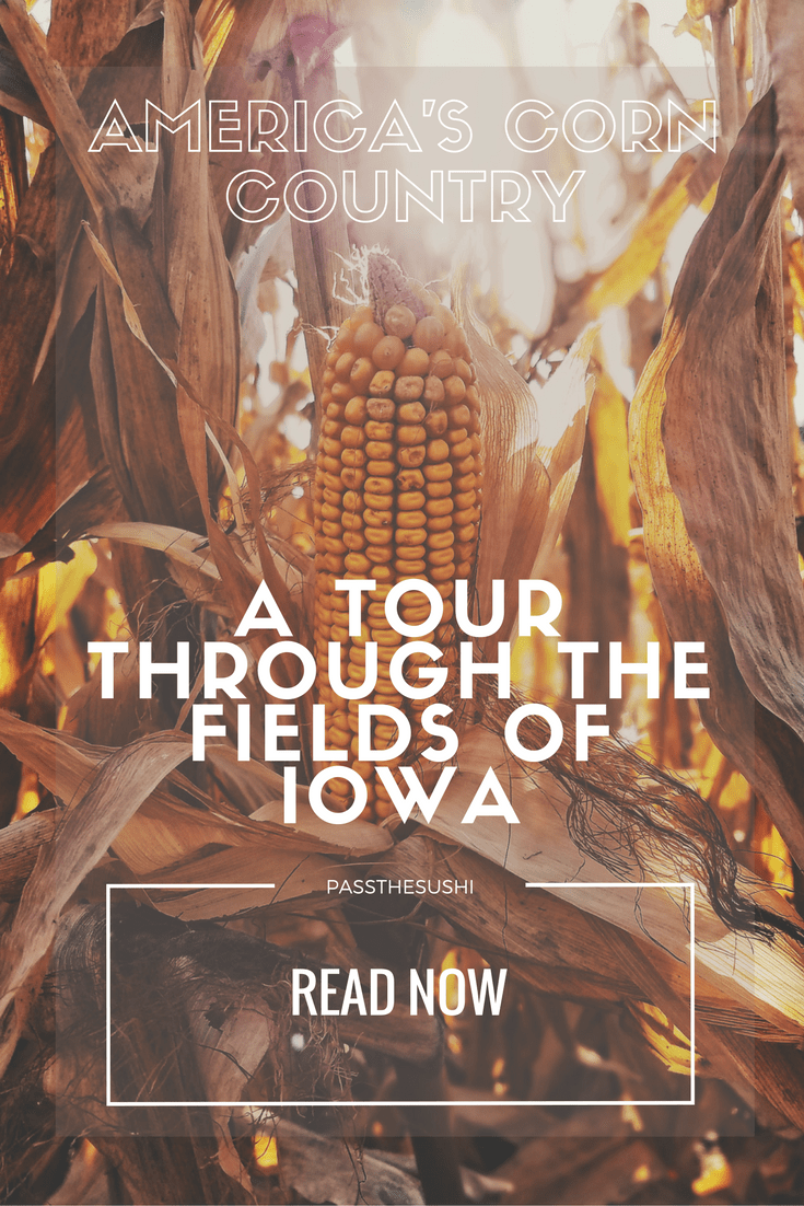 America's Corn Country, a tour through the fields of Iowa