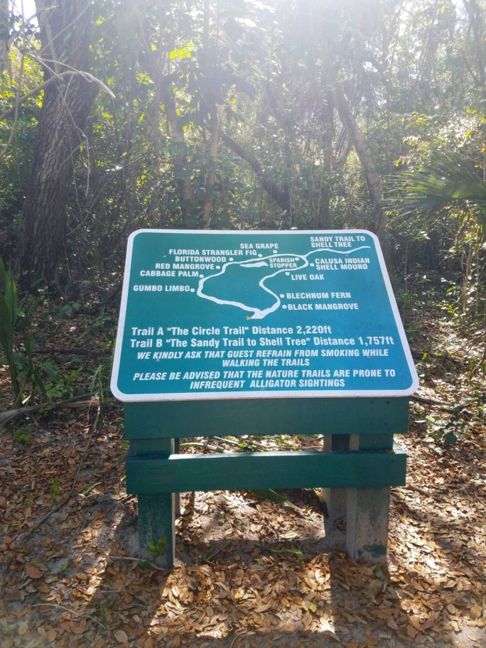 Nature trail on Cabbage Key | What to do at Cabbage Key