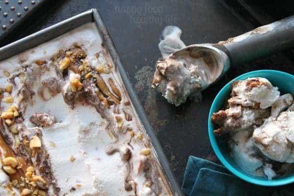Peanutty Coconut Vanilla Ice Cream with Fudge Ripple